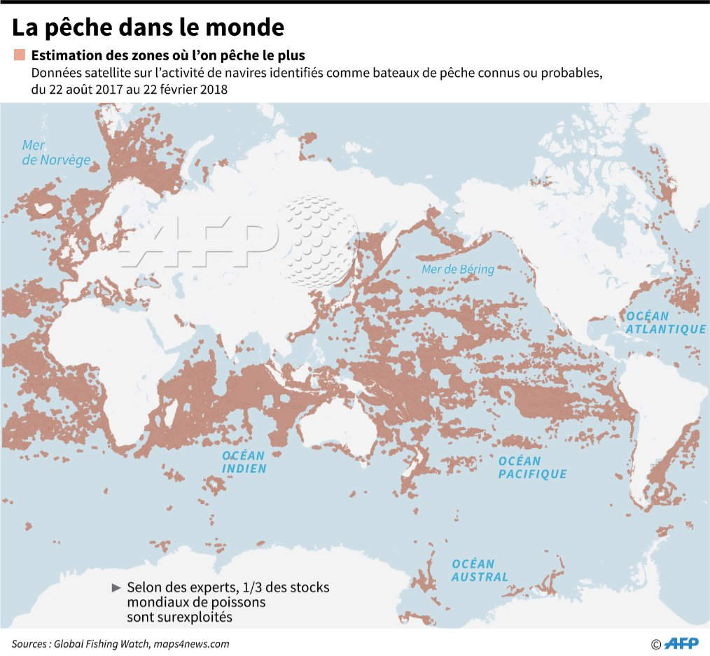 55% de la surface océanique exploitée par les grands chalutiers https://t.co/UJ6Hm5eJa1 #AFP