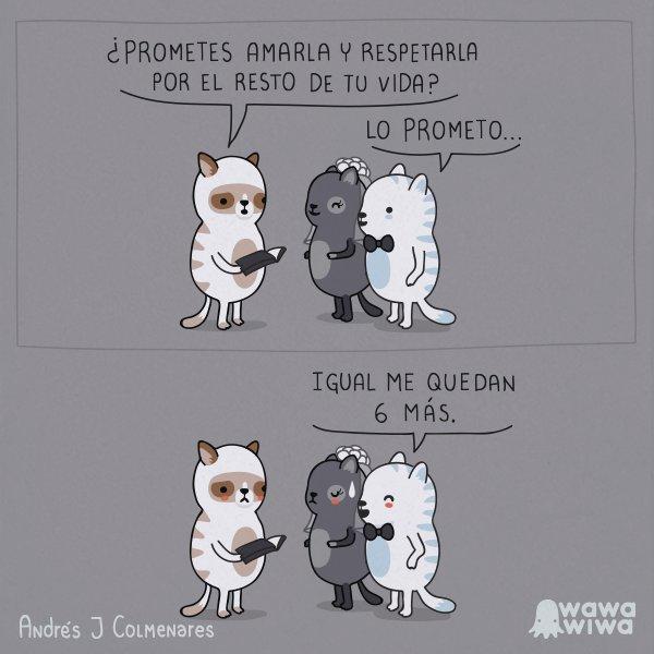 #BuenosYFeministasDías  ¡Ups! El amor, l...