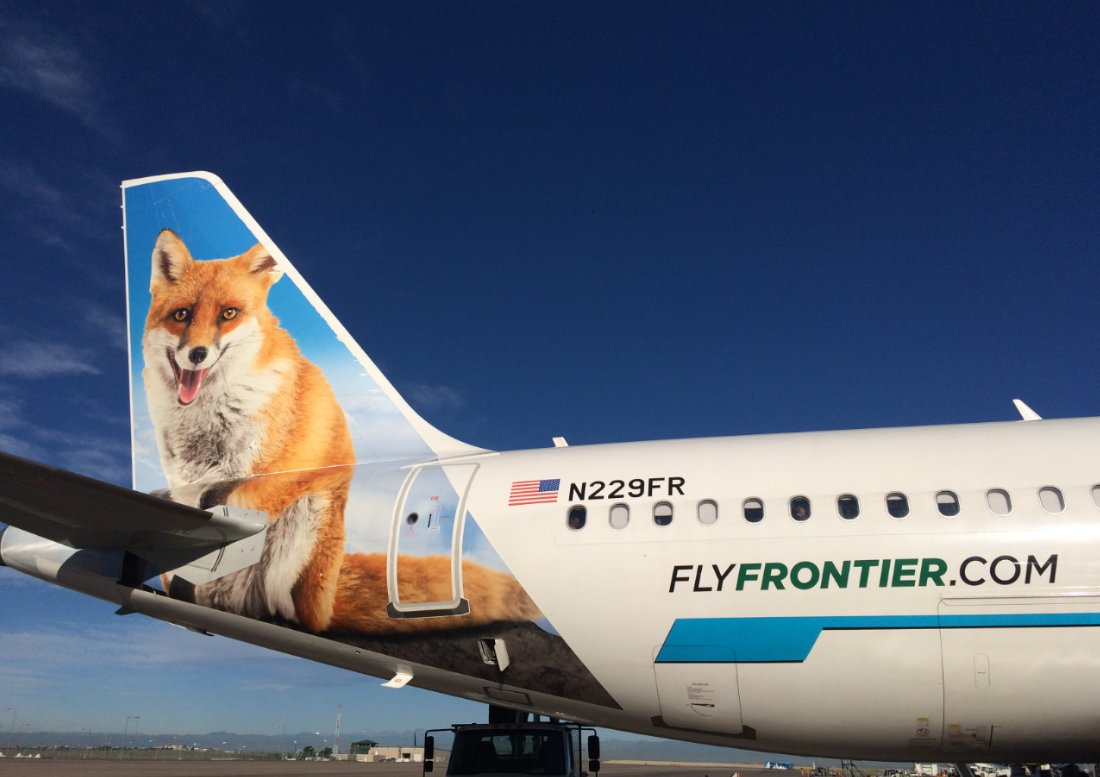 frontier airlines on twitter just a peachy day what s your favorite animal tail favorite animal tail