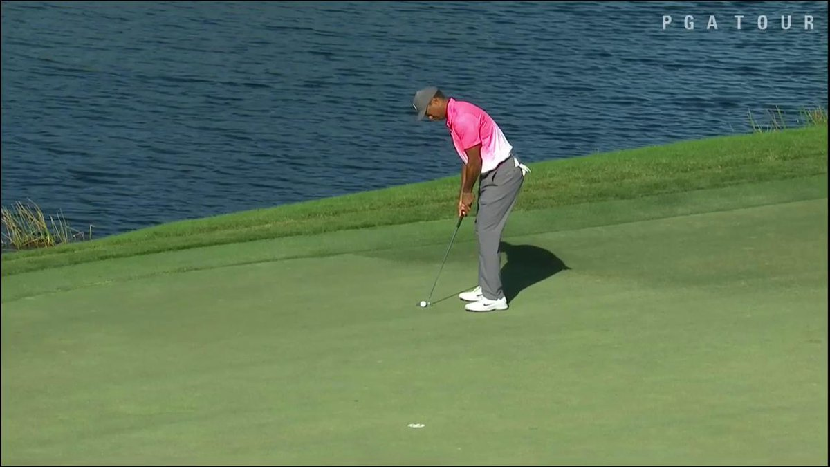 Dear Tiger fist pump,  We've missed you. Welcome back.  💪  #QuickHits