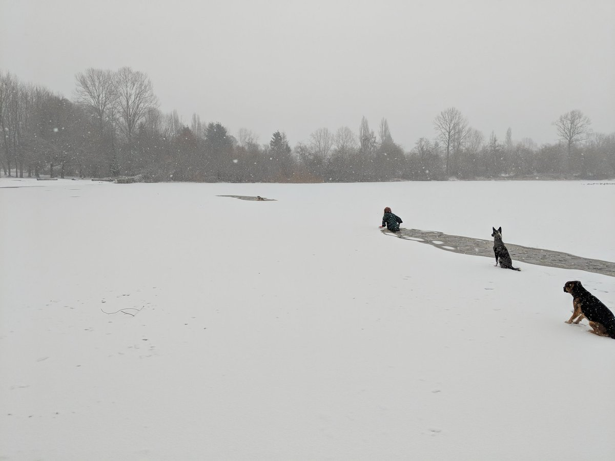 Scary footage shows woman plunging into frozen lake to rescue stranded dog