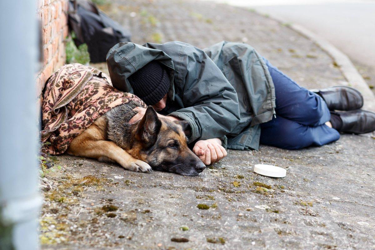Pyrénées-Atlantiques. Trois sans-abri morts en moins de dix jours https://t.co/6JZuhdbQAi