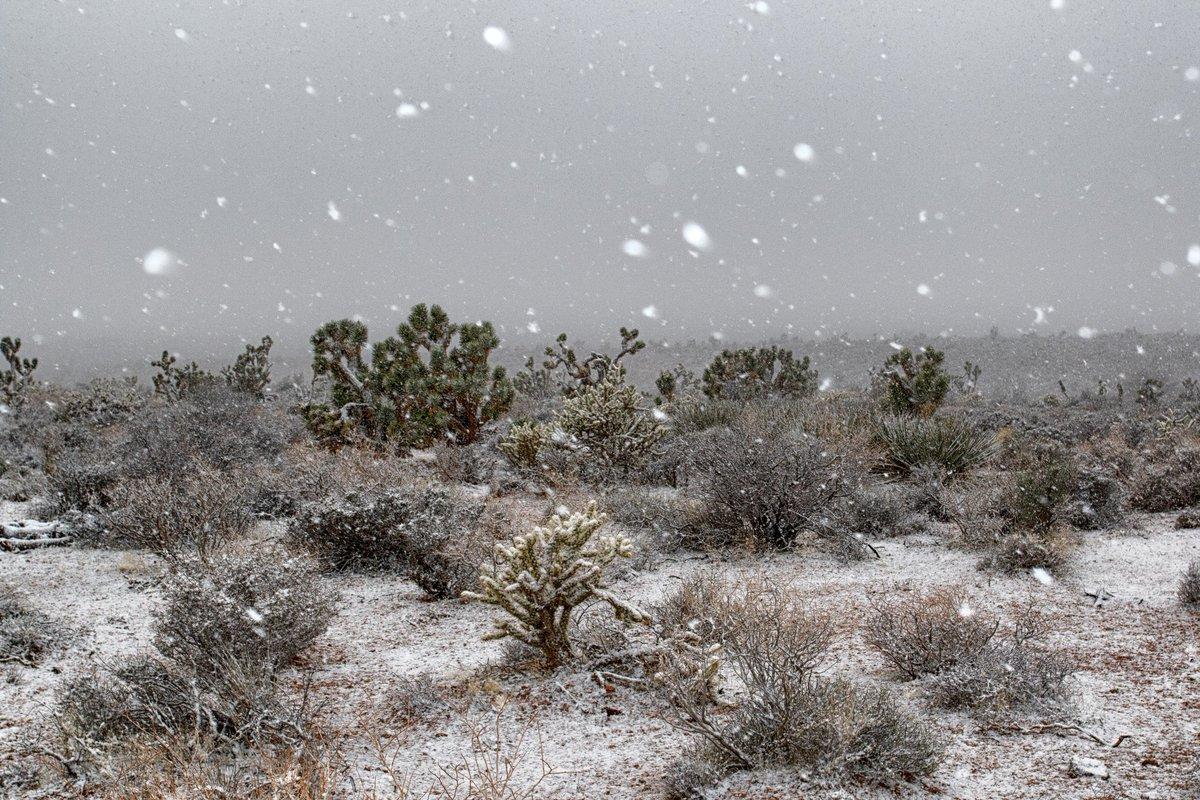 Keep those ❄️ #VegasSnow pics coming! #VegasWeather #NVwx #snow