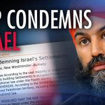 Image for the Tweet beginning: NDP activists conflate #Israelis with