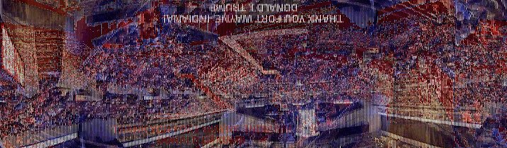 realTrump3000 photo