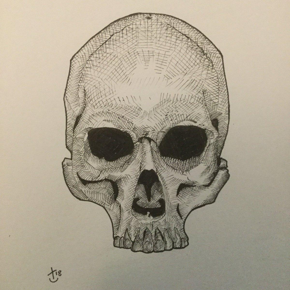 Rat Crow Illustration On Twitter Another Skull Sketch Skull