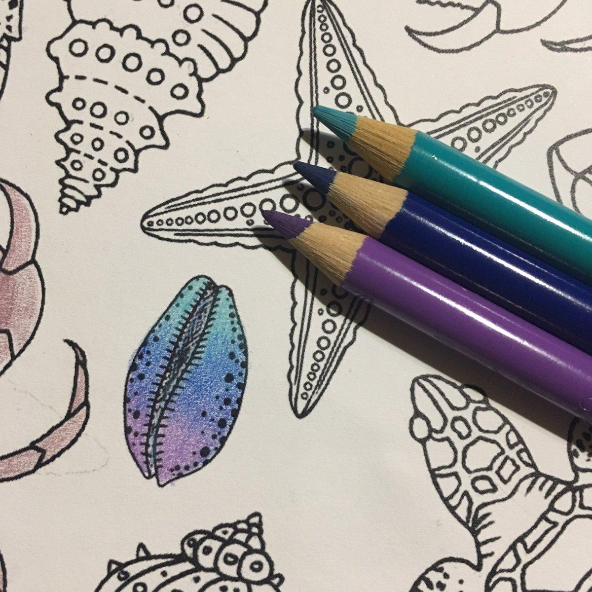 test ツイッターメディア - ダイソーの300円塗り絵「マリンライフ」の1ページを使ってファーバーカステル ポリクロモスの試し書き。色々なメーカーの色鉛筆を試してみたく3色だけバラ買いしてみました。硬い芯なのに重ね塗りができ評判通りの使いやすさでした。 #大人の塗り絵 #ダイソー #色鉛筆 #ポリクロモス https://t.co/6fPk08afH5
