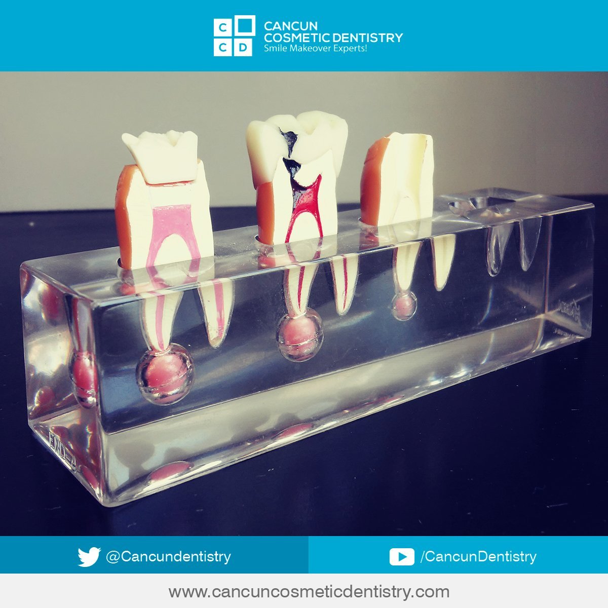 Cancun Dentistry Cancundentistry Twitter # Muebles Dipay Cancun