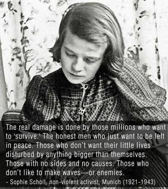 Andrea on Twitter Sophie Scholl SophieScholl activist AntiNazi  AwesomeWoman WWII CourageousWoman Courageous AntiNaziActivist woman  quote CatsMeowDoll httpstcokOJgc4LmO8