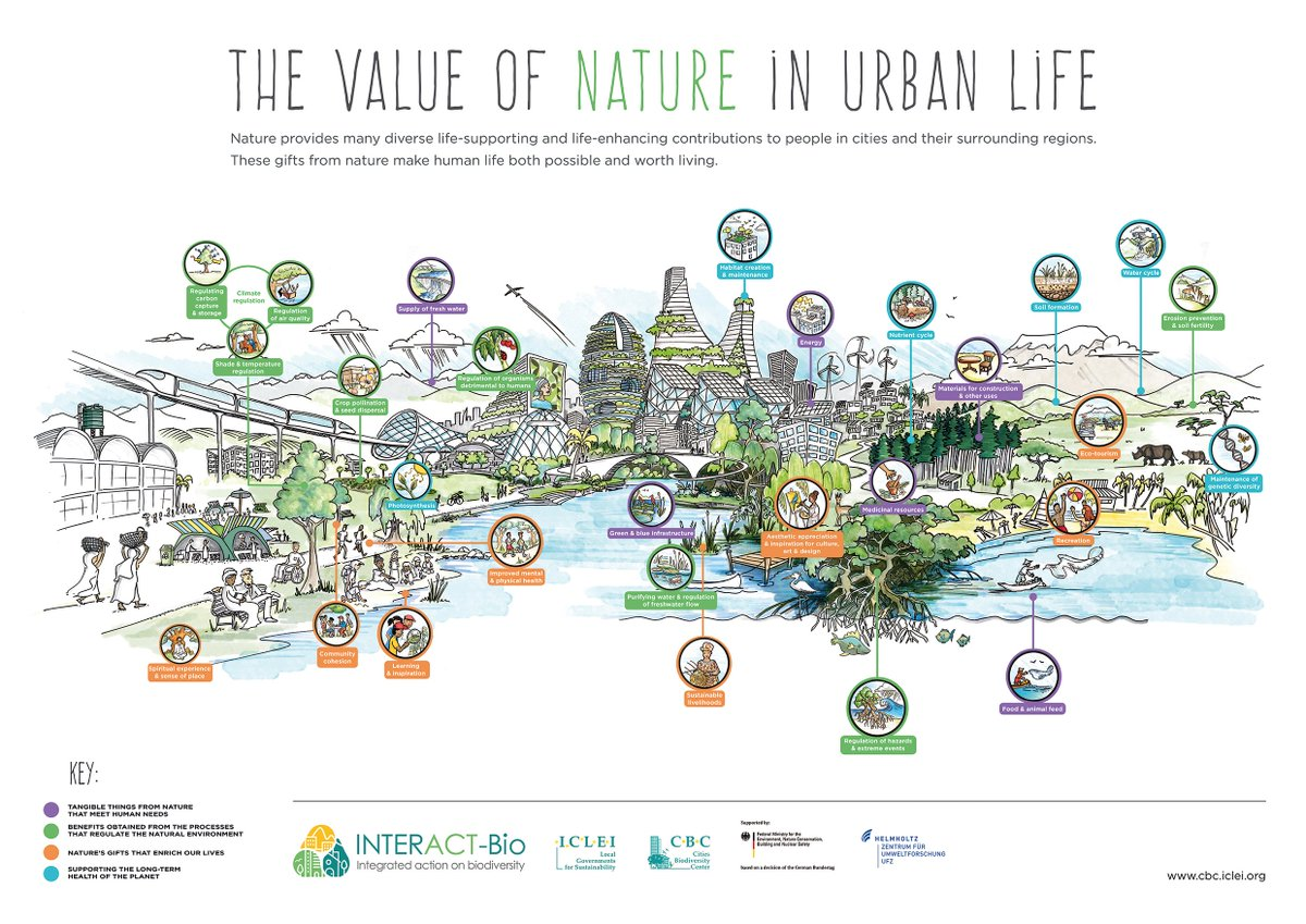 2de1ef672c4 View & download our poster on the #value of nature in #urban life to find  out more. 1/2 http://cbc.iclei.org/value-nature-urban-life/  …pic.twitter.com/ ...