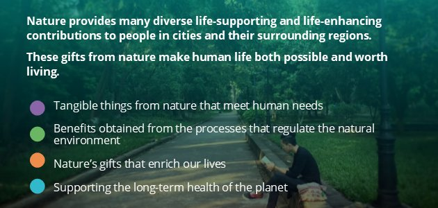 We all know #nature is #important in #cities, but just how much does connecting with nature benefit us? It provides diverse life-supporting & enhancing gifts to people in cities.  Our poster expands on 4 key areas of nature's contributions to people. 2/2  https://t.co/lBRpTYGajV