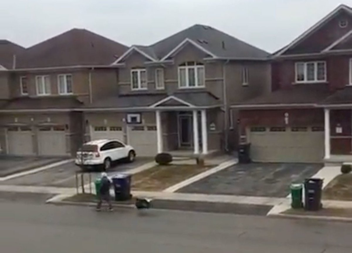 Watch as a video shows a wild turkey chasing a man in #Brampton https://t.co/ueagPheffI