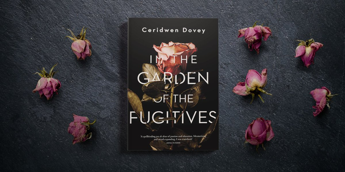ceridwen dovey creative process of writing Ceridwen dovey, author of only the animals and blood kin, on writing.