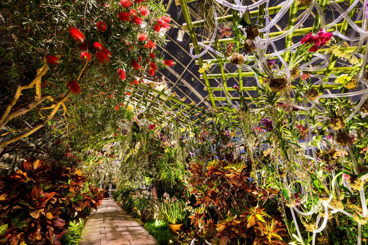 New York Botanical Garden on Twitter: \