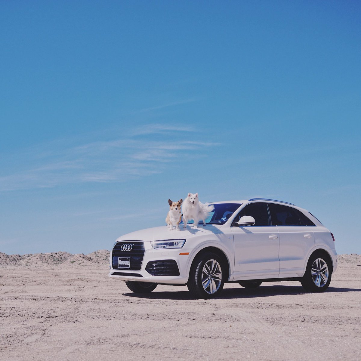 Audi Audi Twitter - Audi official website