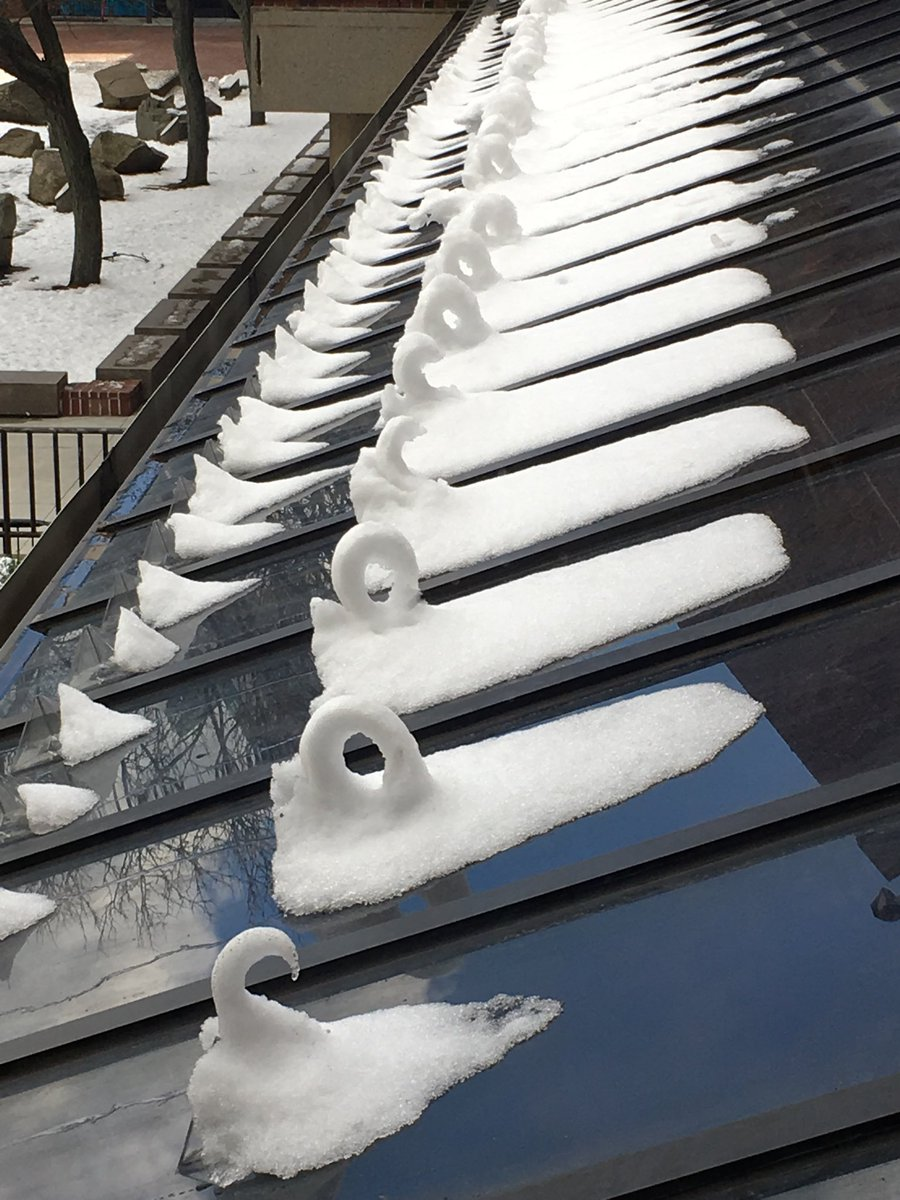 """I saw these """"snow swans"""" on the roof of the Boston Museum of Science just  now (coming down from parking level 3). Why would the wind sculpt such ..."""