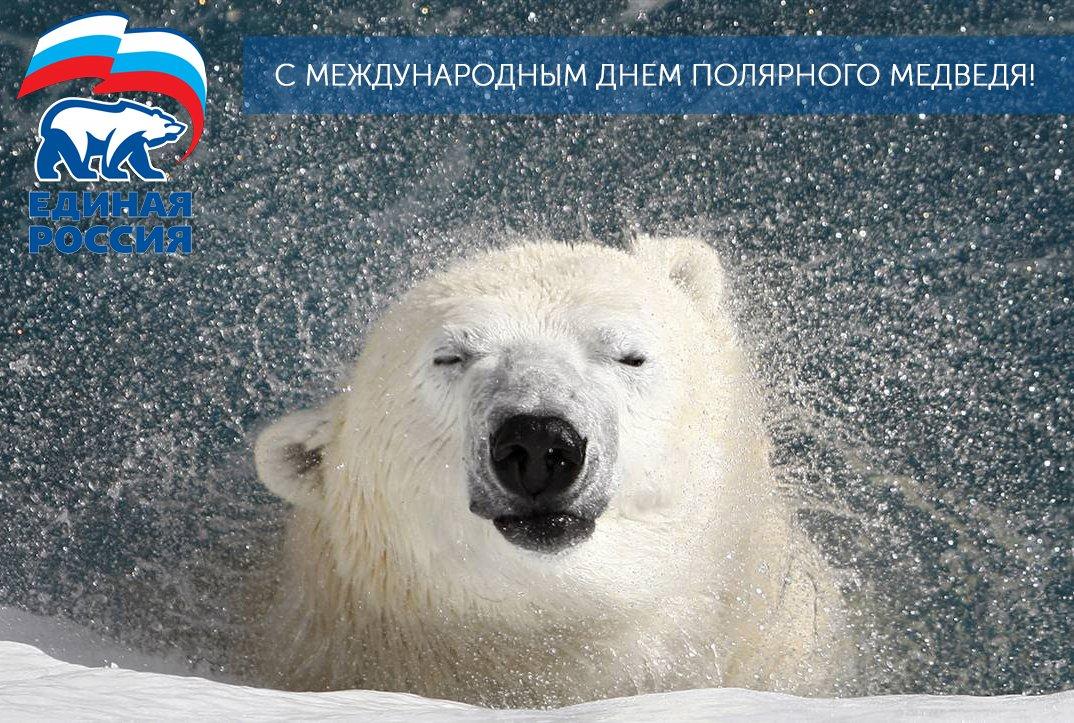стильных поздравление с днем полярного медведя картинки является одним