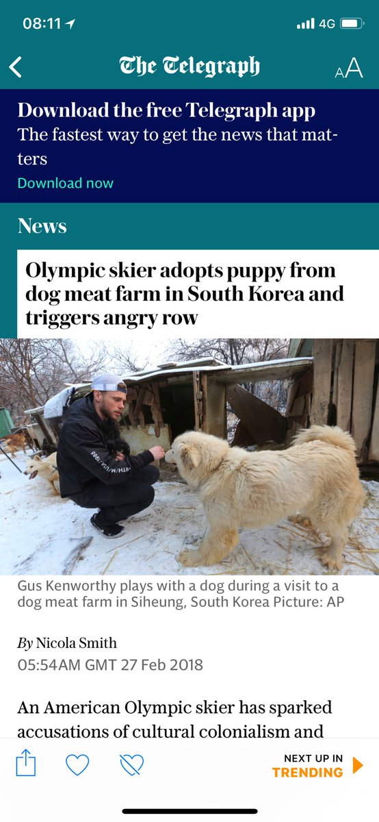 dogsarefriendsnotfood hashtag on Twitter