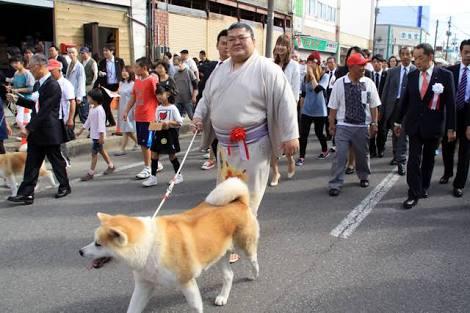 犬 画像 cat image ザギトワちゃんに秋田犬を届ける豪風と秋田県