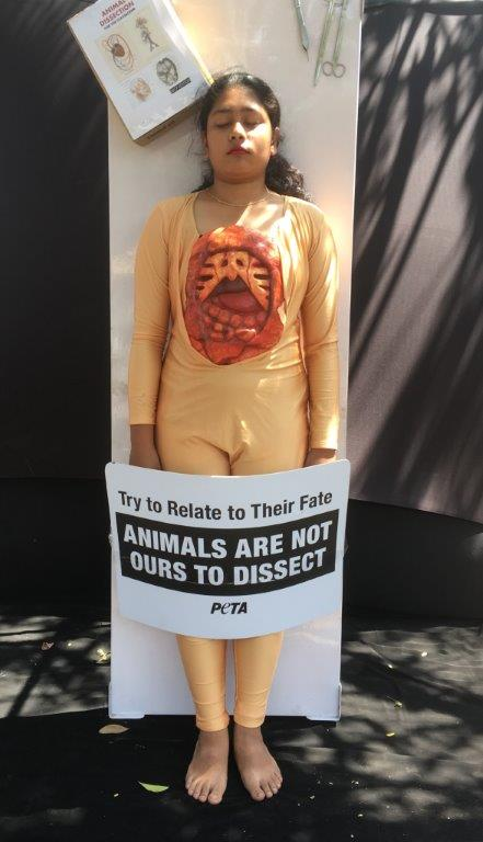 peta for or against animals The center for consumer freedom peta is also against all medical victims of nazi genocide to farm animals 7) peta frequently looks the other way.