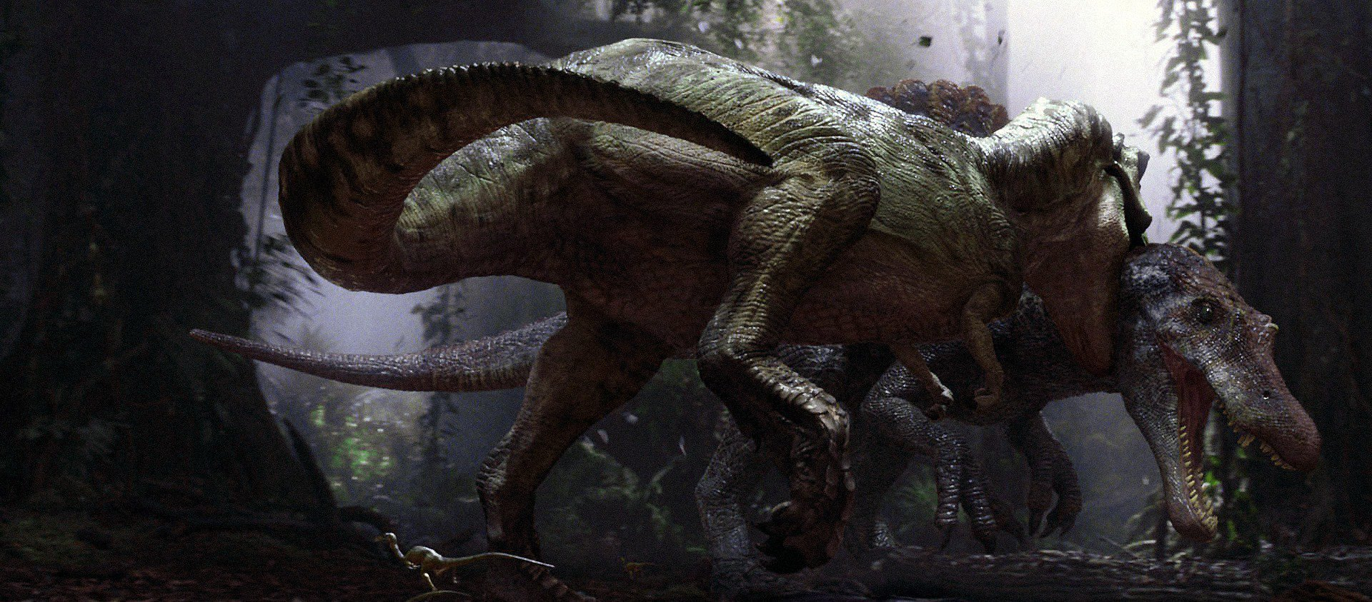 Opinion: Jurassic Park 3's Importance to the Franchise - #JP25 https://t.co/MEJEUVDeaY https://t.co/WLYprh2rLt