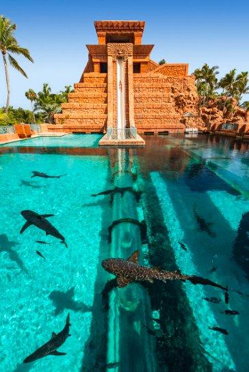 "All N One Travels on Twitter: ""Atlantis Bahamas water ..."