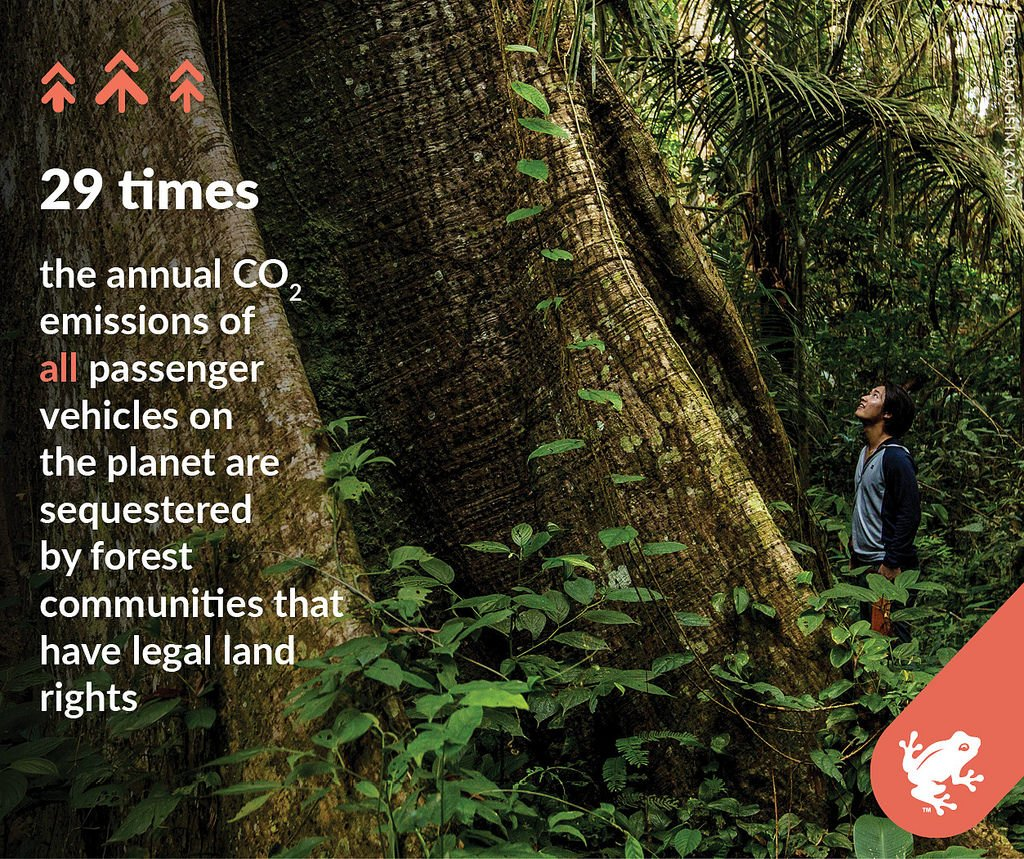 #Forests where indigenous and local communities have legal or official rights sequester 37.7 billion tons of #carbon. That's 29 times the annual CO2 emissions of all the passenger vehicles on the planet. bit.ly/communities_RA