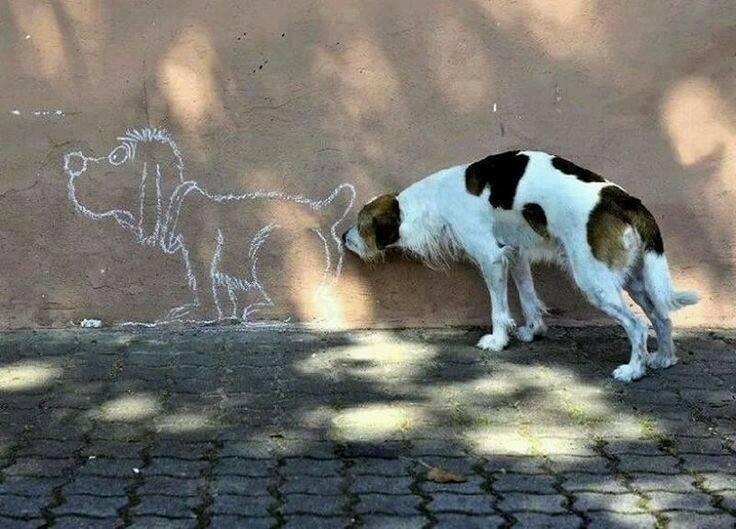 Real art https://t.co/1AEmffujYP