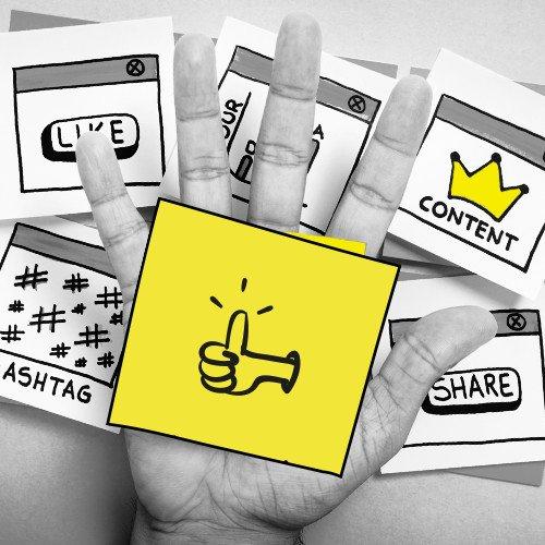 Job 4 you! Werde Social Media Manager/in bei @mindbox_dd! Hier entlang: https://t.co/ZLMbttwDJd #job #SocialMediaManagement #agenturjob #Jobs https://t.co/c8cnyUet2R
