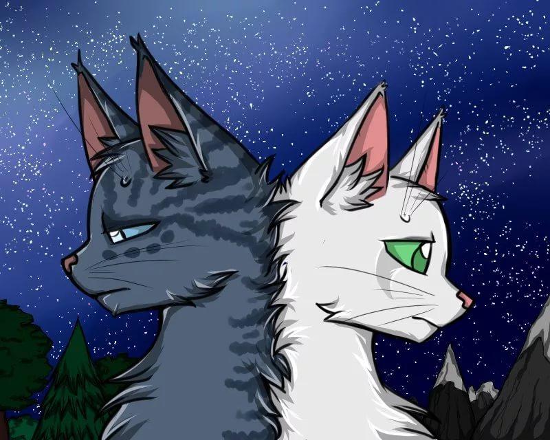 Картинки из мультфильма коты воители