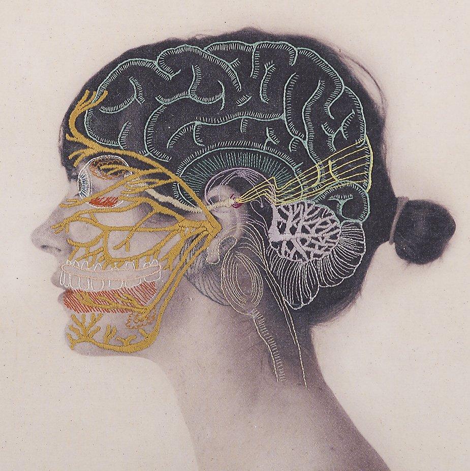 украшения мозг и нос картинки есть