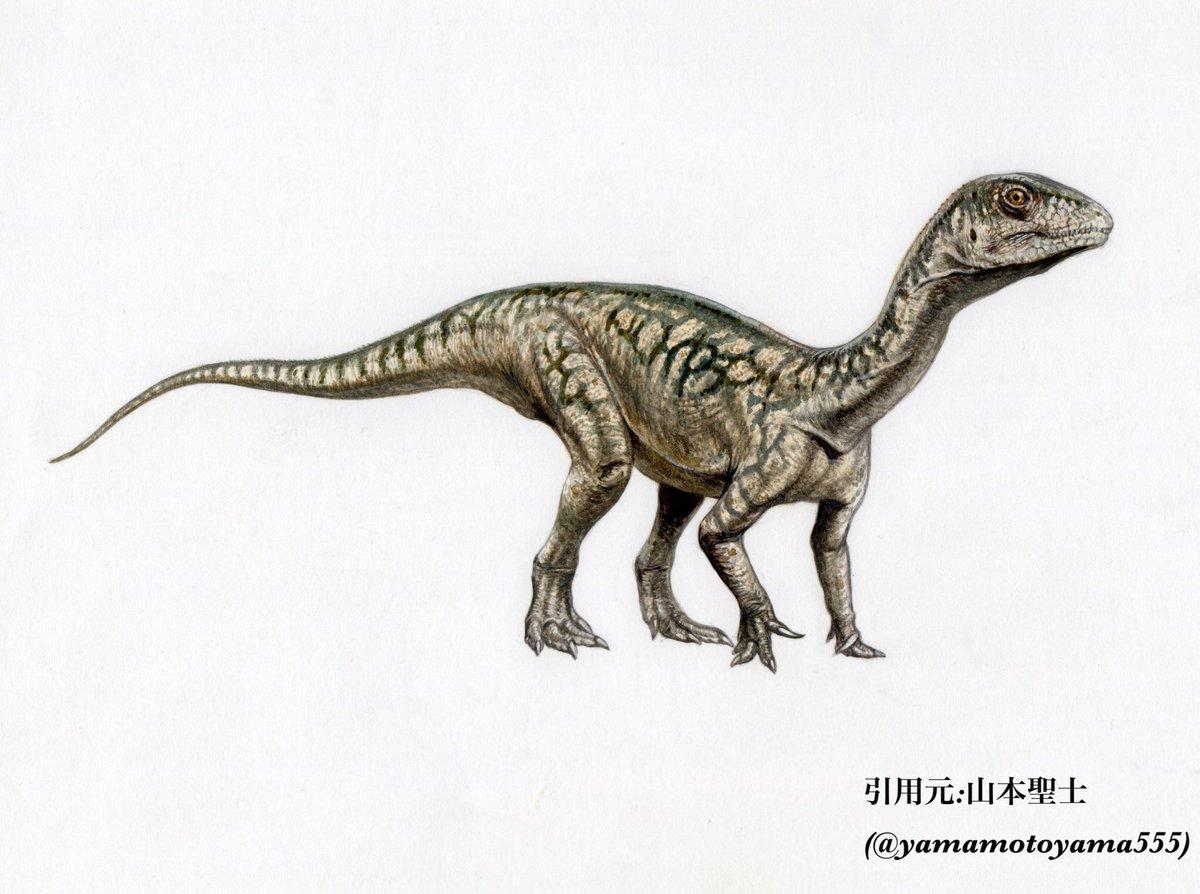 """恐竜bot on Twitter: """"【テコド..."""