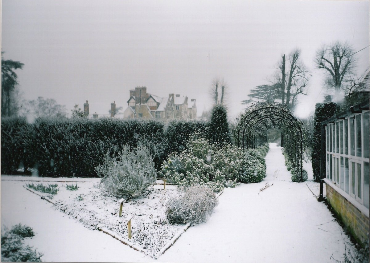 Appropriately, a snowy #tbt #ThrowbackThursday from circa 2007 of the vine walk from the greenhouse/herb garden. Not much snow but more than we've got at the moment although that could change! #BeastFromTheEast #snowinsurrey @GuildfordTIC @VisitSurrey @SurreyLife
