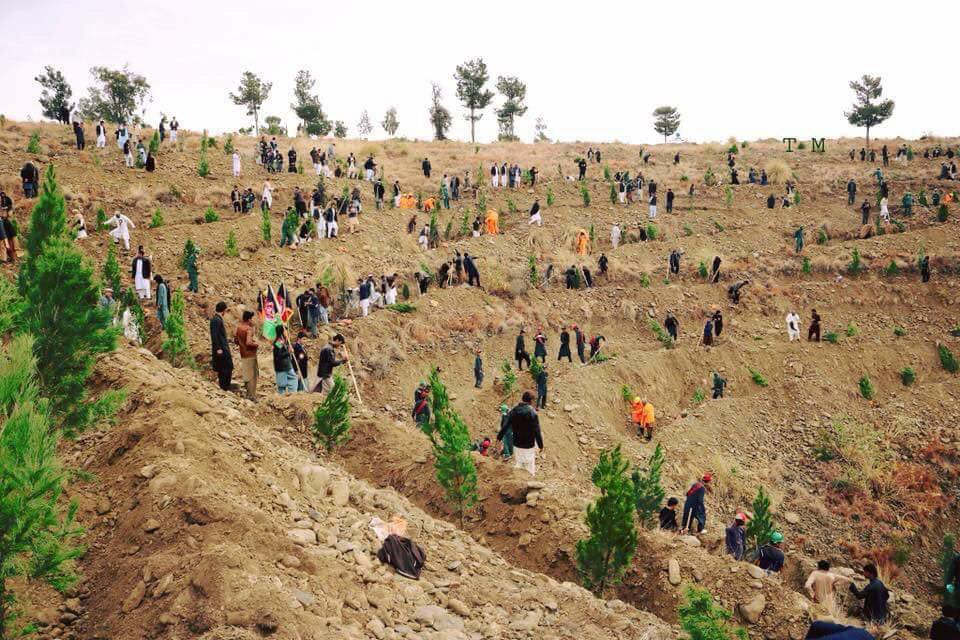 The #Khost municipality organised a event under the name of green Khost where local people as a sign of #Afghan culture planted trees collectively. #اشر #Afghanistan #peace #peaceofmind #people #green #trees #NewGeneration #hope #volunteer #Volunteering #environment # volunteers