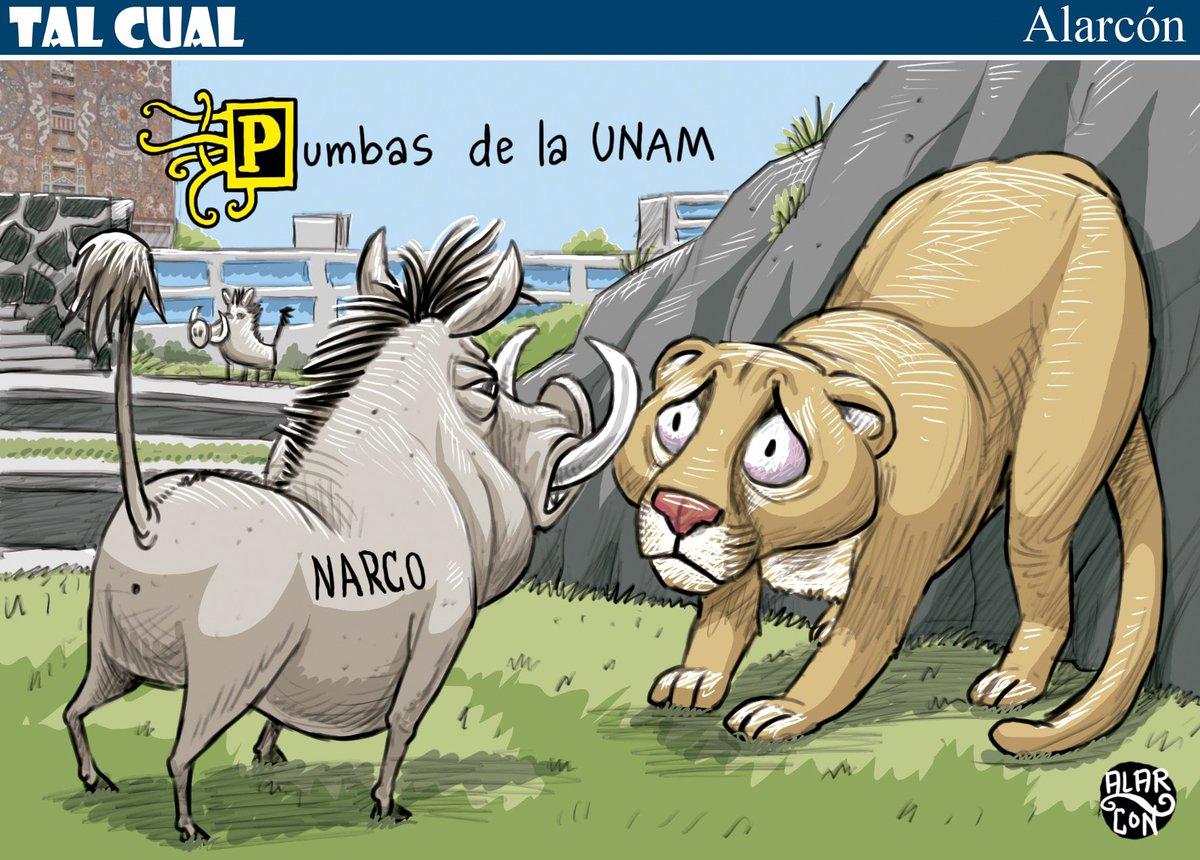 Pumbas de la UNAM - Alarcón