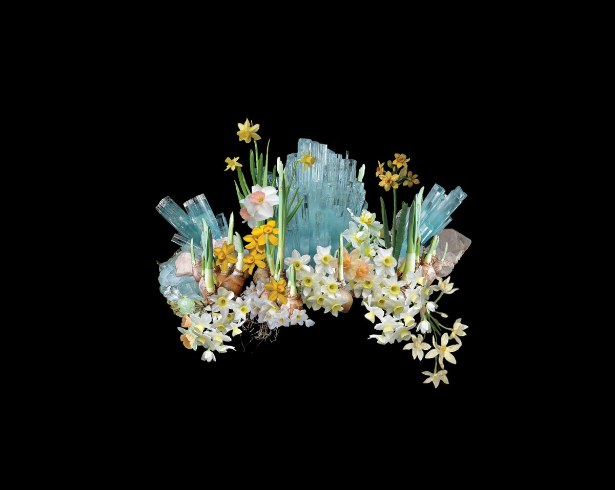 Yuna Marchs Flower Crown Made Of Aquamarine Daff Tweet