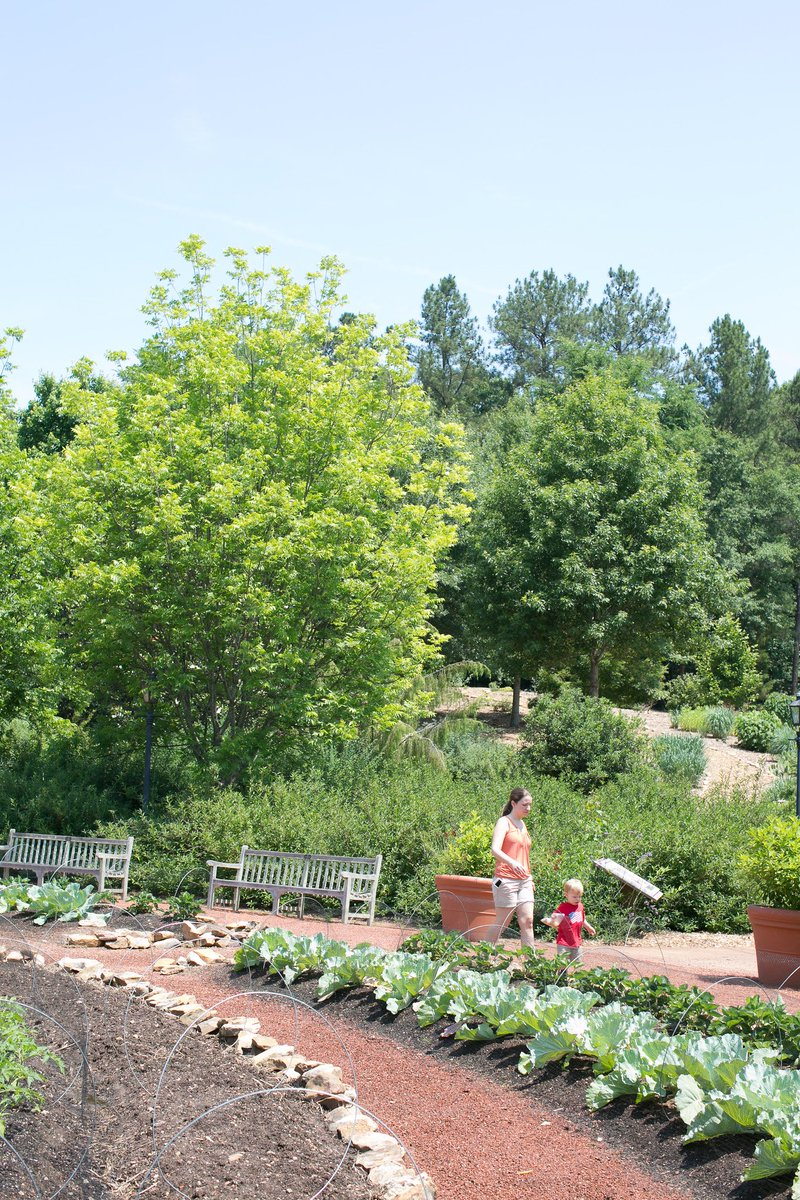 Learn About The #flora And #fauna Of The Garden, Make New Friends, And  Enjoy The Atmosphere! #AthensGA Https://t.uga.edu/3Wg  Pic.twitter.com/AD6TMJQFjW