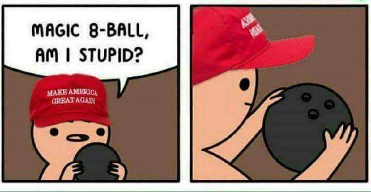 Image result for trump magic eightball head