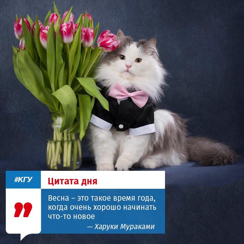 наконец то весна картинки зависимости предпочтений они