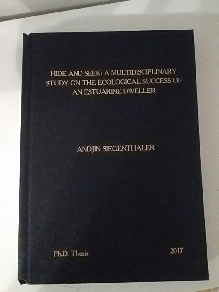 Ready made phd thesis