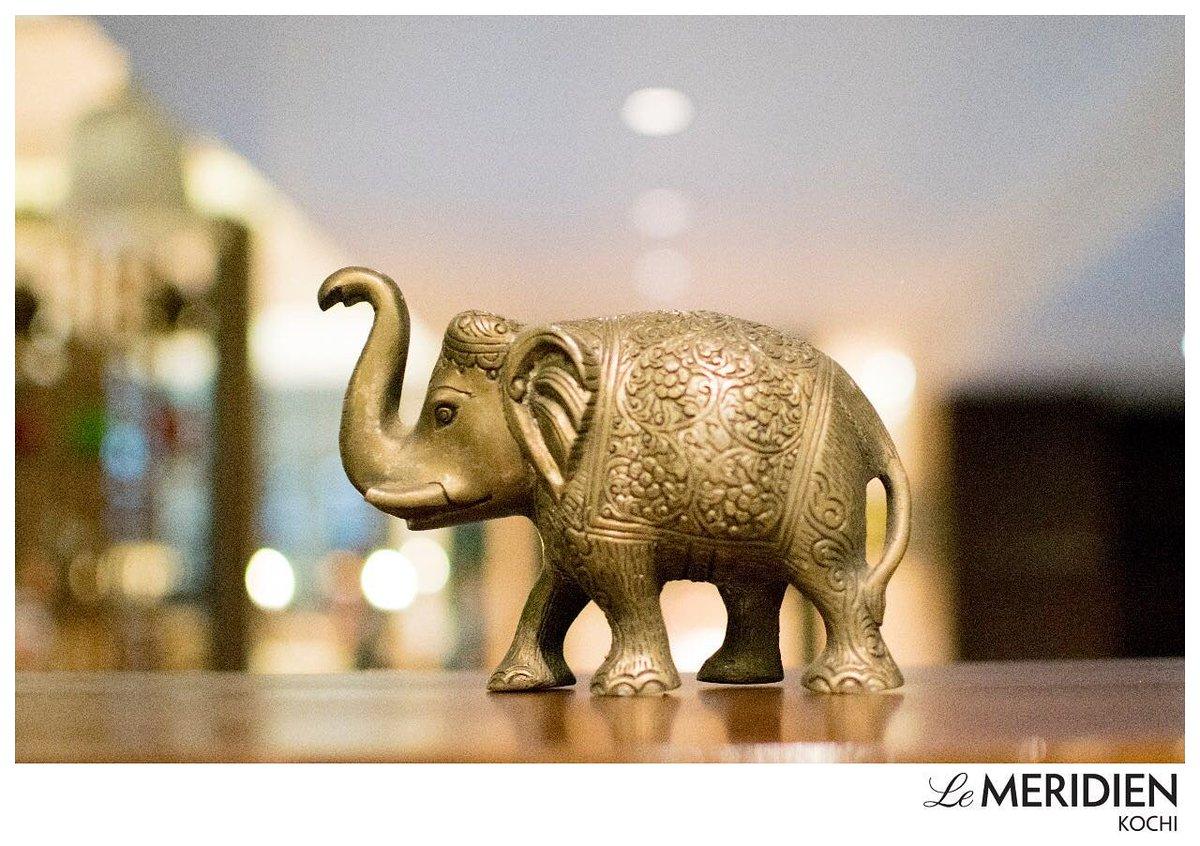 Le Meridien Kochi On Twitter Elephants Symbolize Power