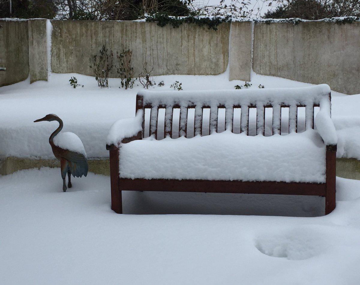 Final #snow #sneactha benchmark in #Foxr...
