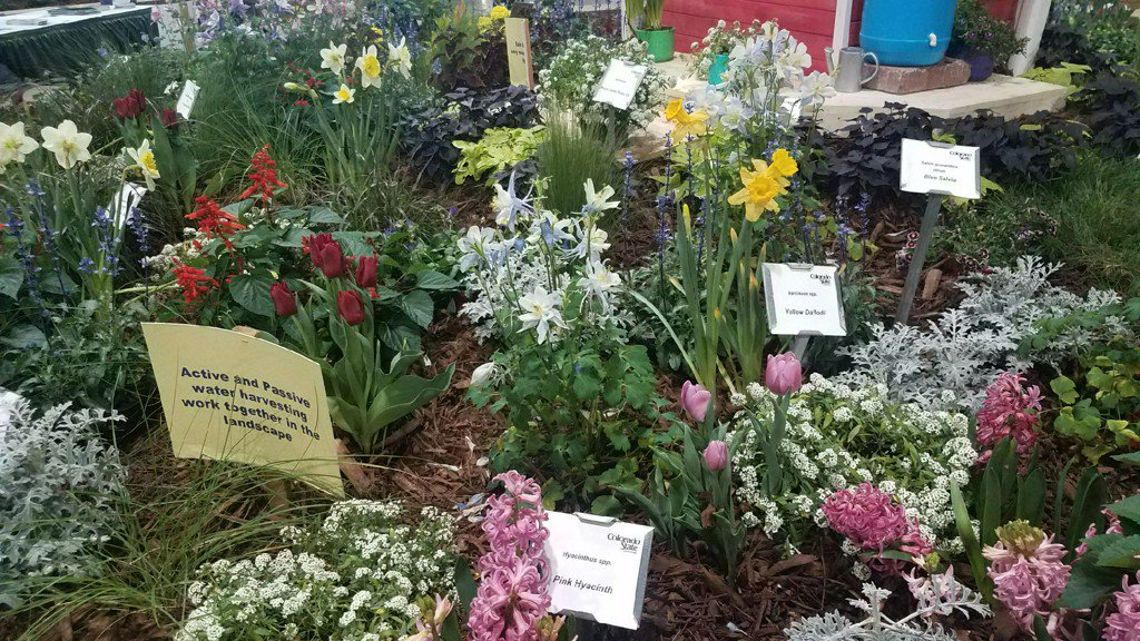 9news Denver On Twitter How Many Flowers Fill The Colorado Garden And Home  Show Ment To