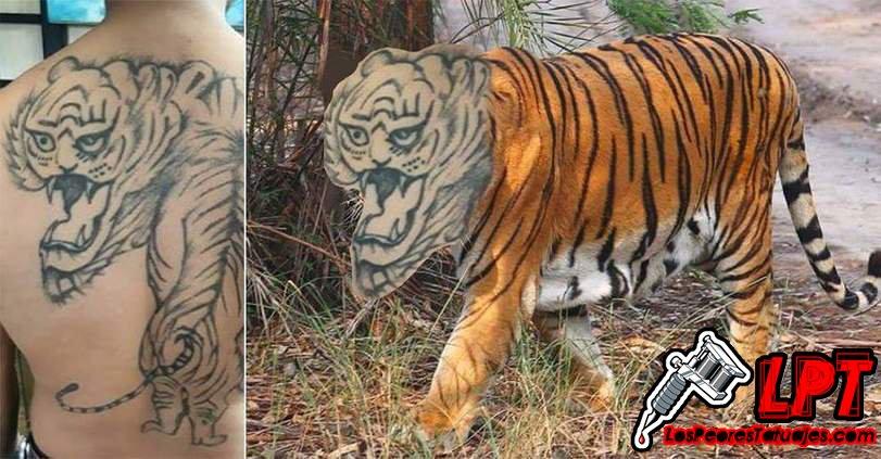 Los Peores Tatuajes On Twitter Meme Tatuaje Fail De Tigre En La