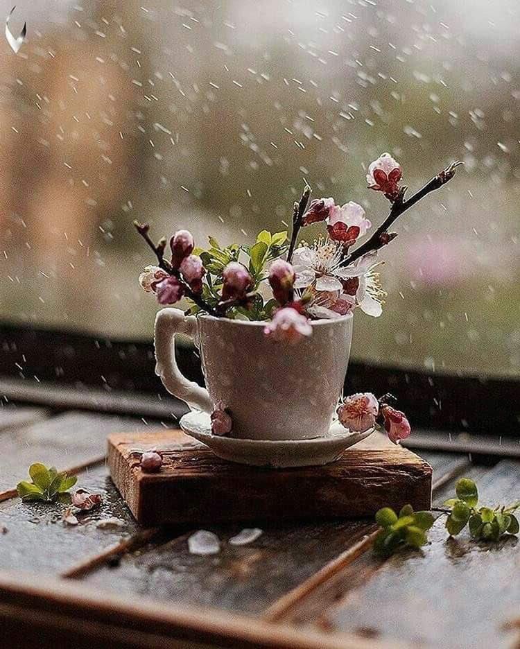 дождь на улице с добрым утром картинки так