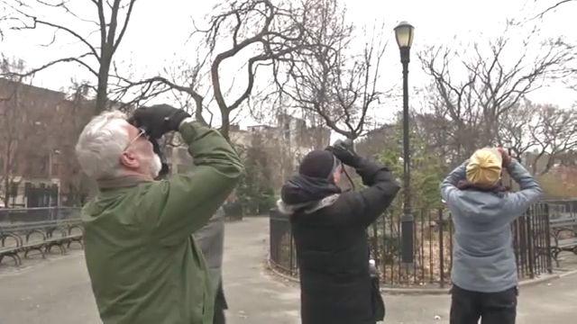 ICYMI: #EastVillage bird watchers aflutter over hawk's two mates. https://t.co/IE8z7GEVWS