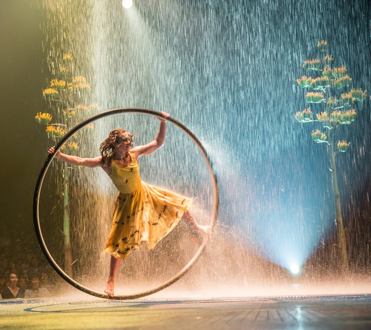 My review of #Luzia 'A dive into the real Mexico'  http://www.fromanother0.com/2018/03/luzia-dive-into-real-mexico.html?spref=tw… #FromAnother0 #OC #CostaMesa #CirqueduSoleil @Cirquepic.twitter.com/B1U7k9iu4V