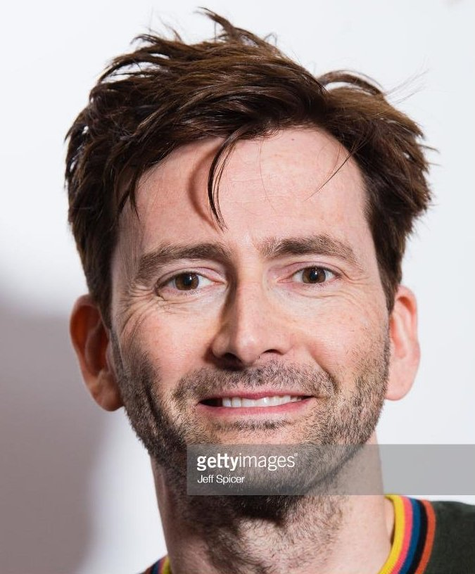 David Tennant at preview of Channel 4 comedy High And Dry - Monday 5th March 2018