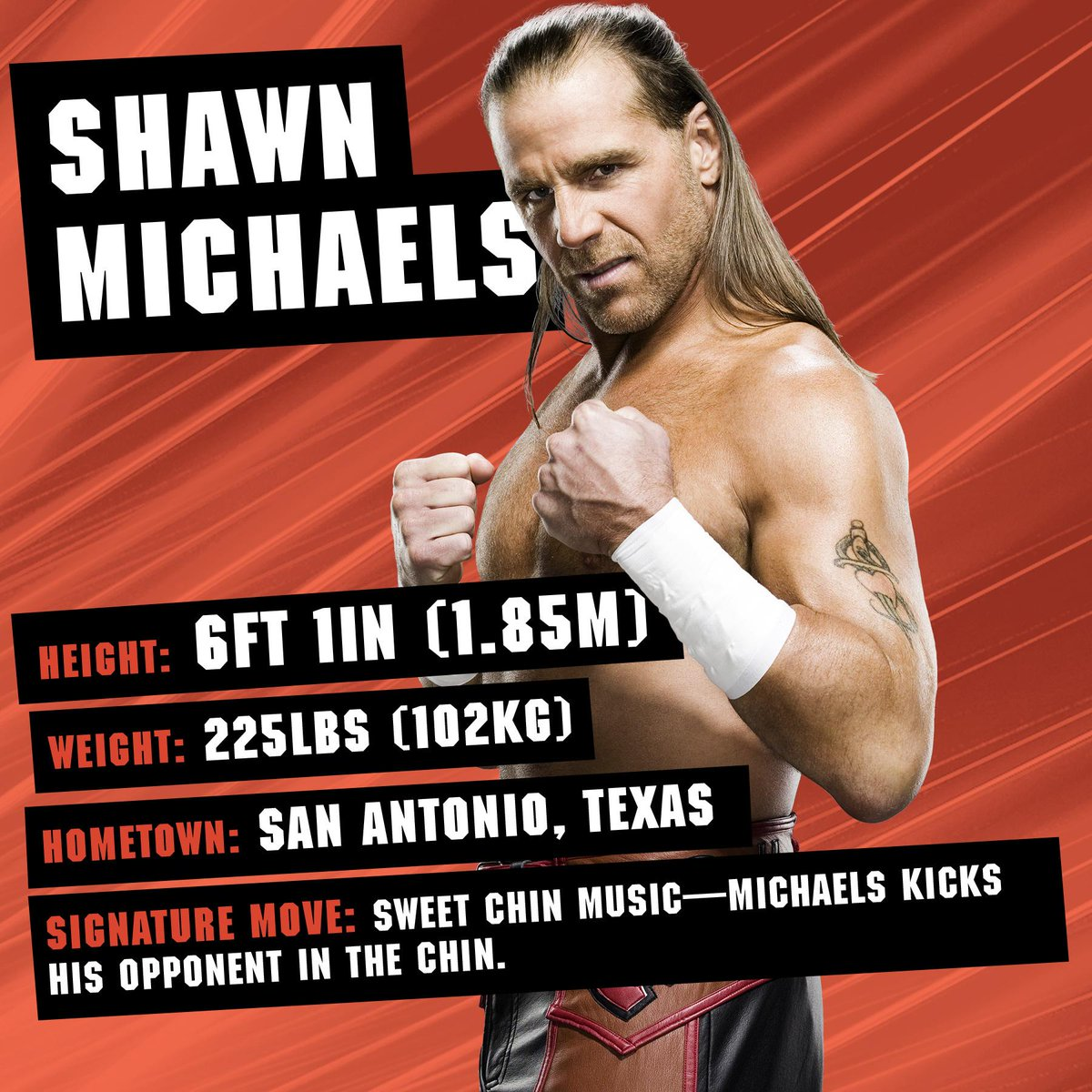 The @WWE Ultimate Superstar Guide is a SHOWSTOPPER! @ShawnMichaels wwe.me/zPY9Ha