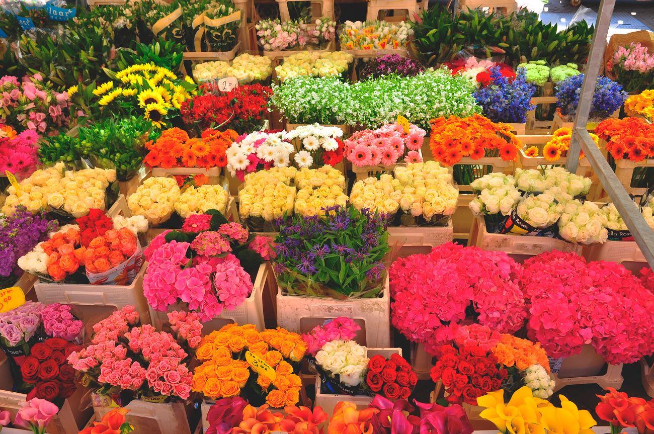 Названия, заказать цветы москва алматы недорого